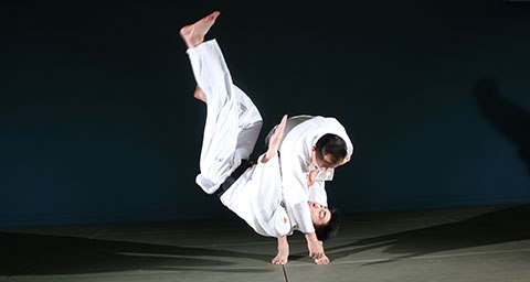 Judo Techniques Pdf